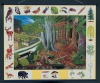 """Магнитный плакат """"Природное сообщество леса"""""""